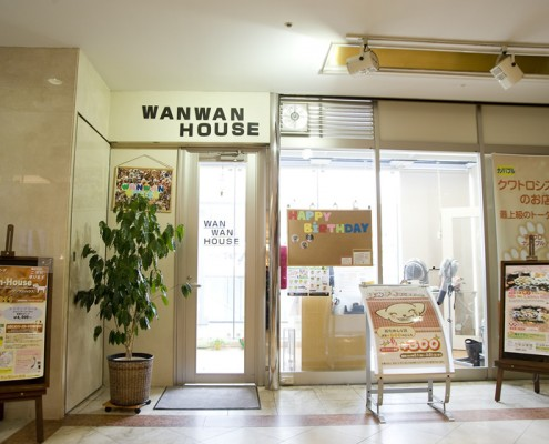 110_wanwan