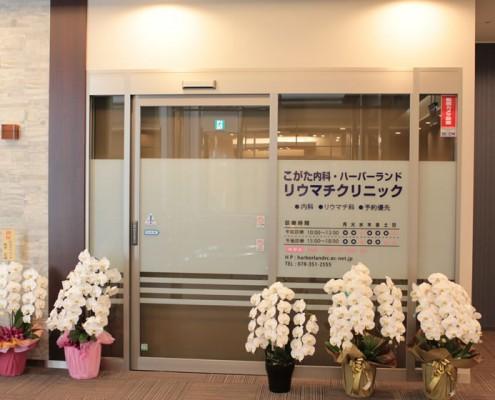 303kogata-clinic-710x560